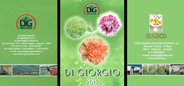 Novedades en variedades de Clavel en el catálogo de Di Giorgio 2017