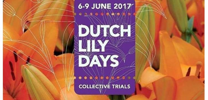 Dutch Lily Days – Flower Trial 2017