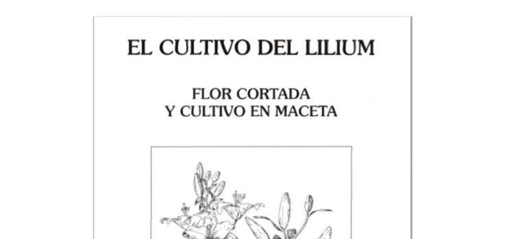 El Cultivo del Lilium Flor Cortada y cultivo en maceta