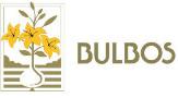 Logotipo bulboseu